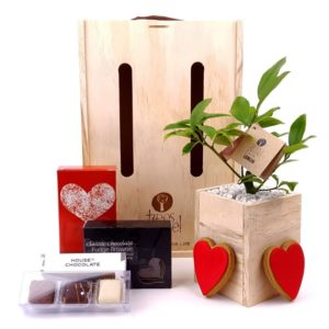 all_my_heart_tree_gift_large Valentines day