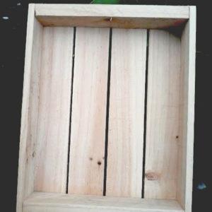 Fodda Seedling-Tray