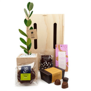 double_addiction tree gift box