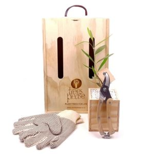 tree_with_secateurs__gloves_large- gift