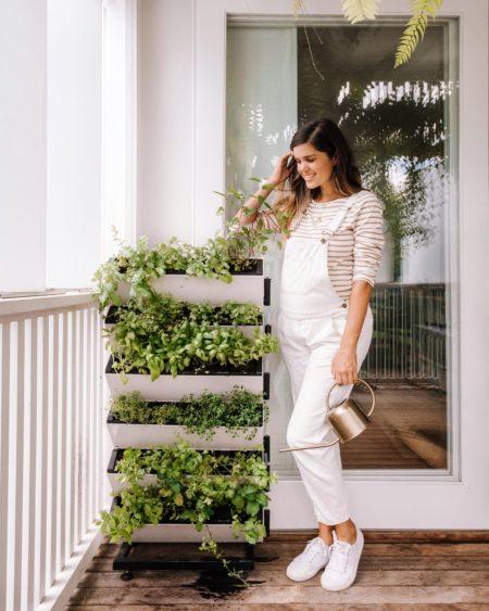 Vertical Garden White Lady