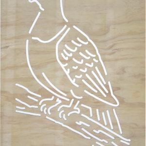 garden screen Wood-Pigeon-Kererū